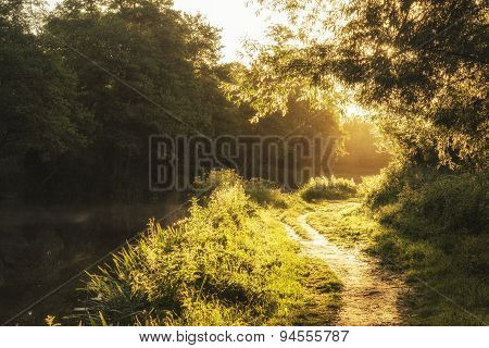 Beautiful Stunning Sunrise Landscape Of Sunlight Glowing On Footpath In Trees
