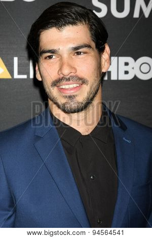 LOS ANGELES - JUN 27:  Raul Castillo at the NALIP 16th Annual Latino Media Awards at the W Hollywood on June 27, 2015 in Los Angeles, CA