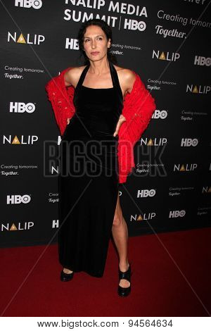 LOS ANGELES - JUN 27:  Francesca Fanti at the NALIP 16th Annual Latino Media Awards at the W Hollywood on June 27, 2015 in Los Angeles, CA