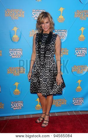 LOS ANGELES - JUN 25:  Catherine Mary Stewart at the 41st Annual Saturn Awards Arrivals at the The Castaways on June 25, 2015 in Burbank, CA