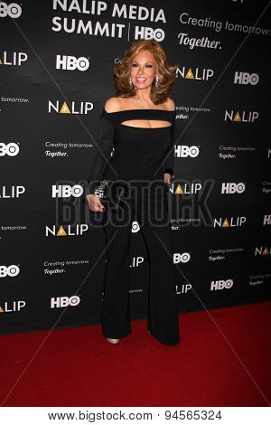 LOS ANGELES - JUN 27:  NALIP 16th Annual Latino Media Awards at the NALIP 16th Annual Latino Media Awards at the W Hollywood on June 27, 2015 in Los Angeles, CA