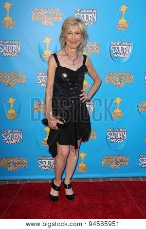 LOS ANGELES - JUN 25:  Lin Shaye at the 41st Annual Saturn Awards Arrivals at the The Castaways on June 25, 2015 in Burbank, CA