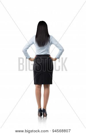 Rear View Of The Business Woman In Formal Clothes. Isolated.