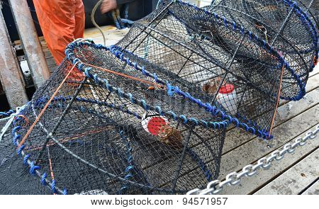 Prawn Traps Ready To Launch