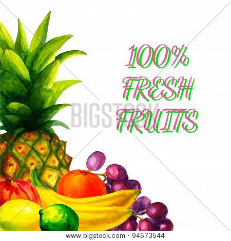 Hand drawn watercolor fresh organic fruits illustration set on white background vector