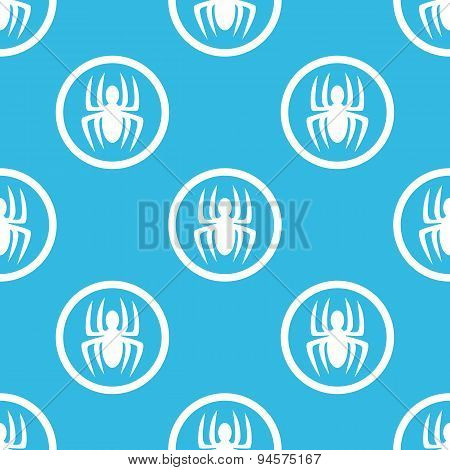 Spider sign blue pattern
