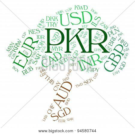 Pkr Currency Indicates Pakistani Rupees And Broker