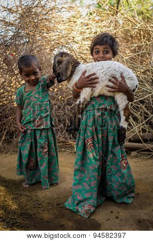GODWAR REGION, INDIA - 13 FEBRUARY 2015: Two little Rabari girls in stable with small lamb. Rabari or Rewari are an Indian community in the state of Gujarat.