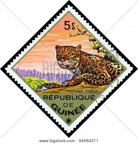 Vintage  Postage Stamp.  Leopard. Africa.