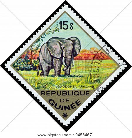 Vintage  Postage Stamp. Elephant To Africa.