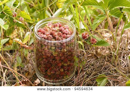 Ripe strawberries in a jar of glass