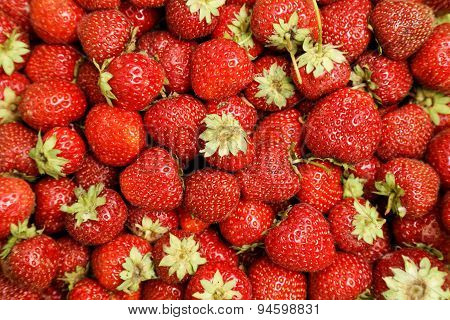 Image Of Lots Of Fresh Strawberries