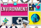 picture of environmental conservation  - Environment Ecology Environmental Conservation Global Concept - JPG