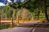 pic of pier a lake  - pier on the Lake in mountain near coniferous forest - JPG