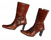 picture of crocodile  - Crocodile brown fashion leather boots on white background - JPG