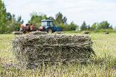 foto of hay bale  - Close - JPG