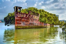 image of collier  - Historic Shipwreck in Homebush Bay - JPG