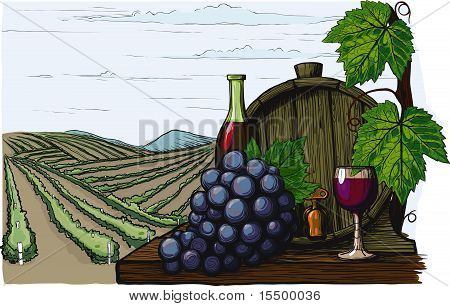 Landscape with views of vineyards