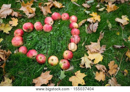 season, nature, love, valentines day and environment concept - apples in heart shape and autumn leaves on grass
