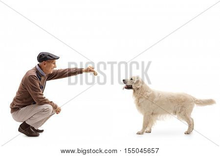 Mature man kneeling and giving a cookie to a dog isolated on white background