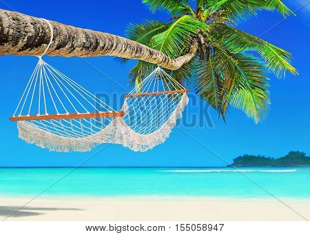 Wooden mesh hammock on perfect tropical white sandy coconut palm beach Baie Lazare Mahe island Seychelles Indian Ocean