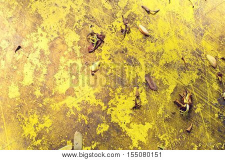 yellow colour texture for backgrounds photo image