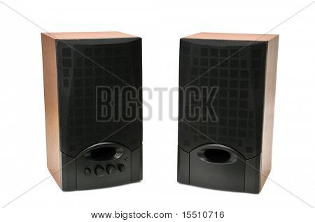 acoustic systems isolated on a white