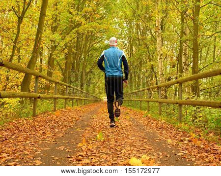 Sportsman in blue t-shirt and black trousers run on road. The man is slowly running on asphalt way covered by autumn leaves. Pathway in park beeches and maples leaves.