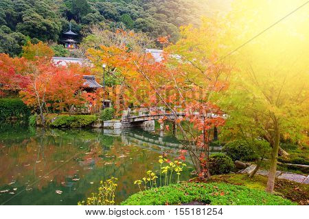 Eikando Temple With Fall Foliage, Kyoto