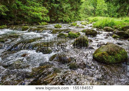 Mountain stream flowing between mossy stones in summer