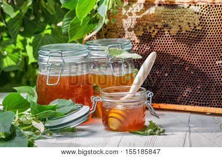 Honey In A Jar And Honeycomb On The Background Of Linden Trees