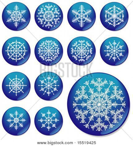 Thirteen snowflakes. The vector image.
