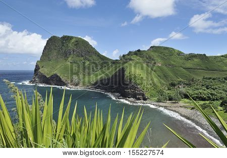 Kahakuloa Bay in Maui, Hawaii including Kahakuloa Head, with green plants in foreground
