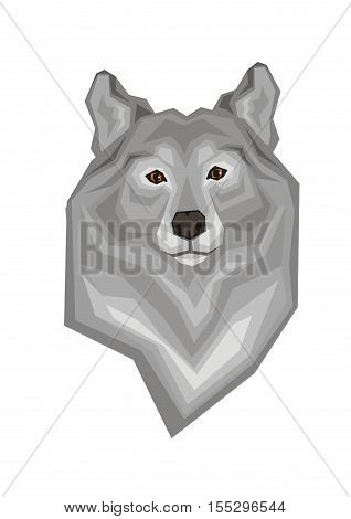 Head of a grey wolf.  Vector image of a predatory animal. Isolated on a white background.