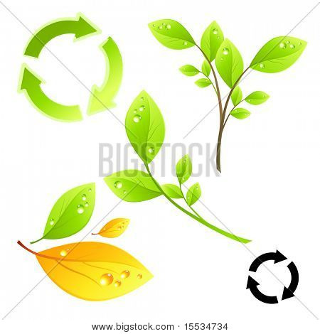 Green living vector elements.