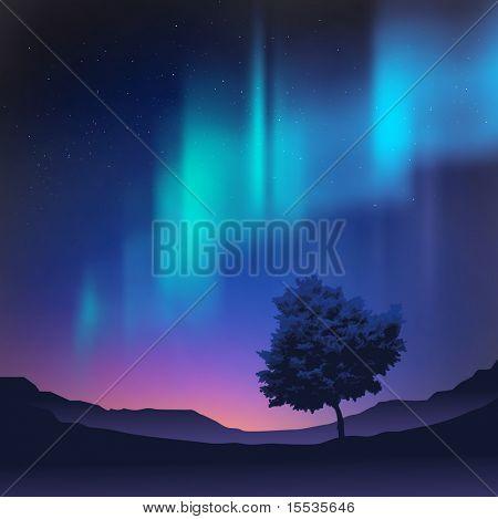 As luzes do Norte com uma árvore em primeiro plano, ilustração vetorial.