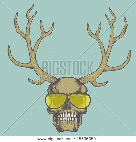 Vector skull with deer horn illustration. Hand drawn skull. Spooky and scary halloween skull