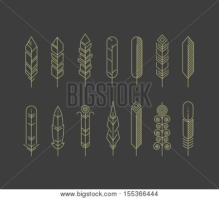 Linear feathers vector icons. Hipster vintage feather set, illustration of feather in line style