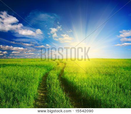 camino de tierra en la hierba y la puesta del sol