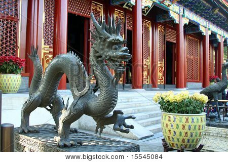 dragon in the Imperial Palace in Beijing, China