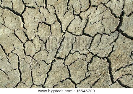 close up on dry cracked land