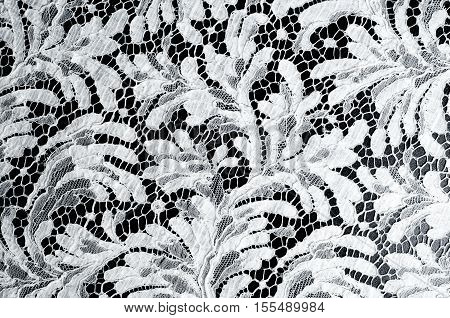 Lace Fabric Texture. Lace On Black Background Studio