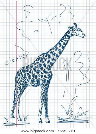 Hand drawn giraffe Vector
