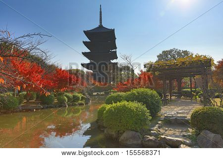 To-ji Pagoda In Kyoto, Japan During The Fall Season.