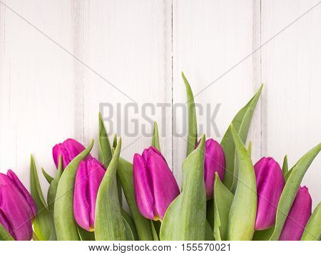 pink tulip bouquet on white wooden background