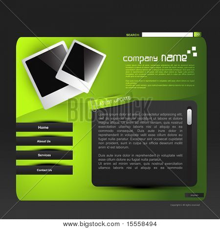 stylish vector web template design