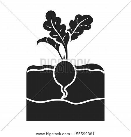 Radish icon in black style isolated on white background. Plant symbol vector illustration.