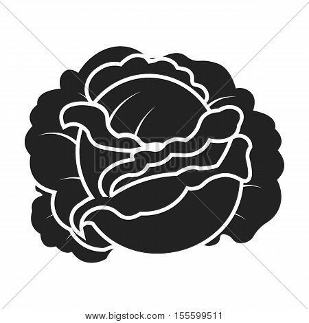 Cabbage icon in black style isolated on white background. Plant symbol vector illustration.