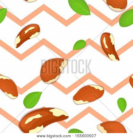 Seamless vector pattern of brazilian nut. Striped zig-zag background with delicious brazilnut, leaves. Illustration can be used for printing on fabric, textile in design packaging, packaging design