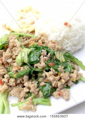 Close Up Rice Topped With Stir Fried Minced Pork And Basil, Thai Food.